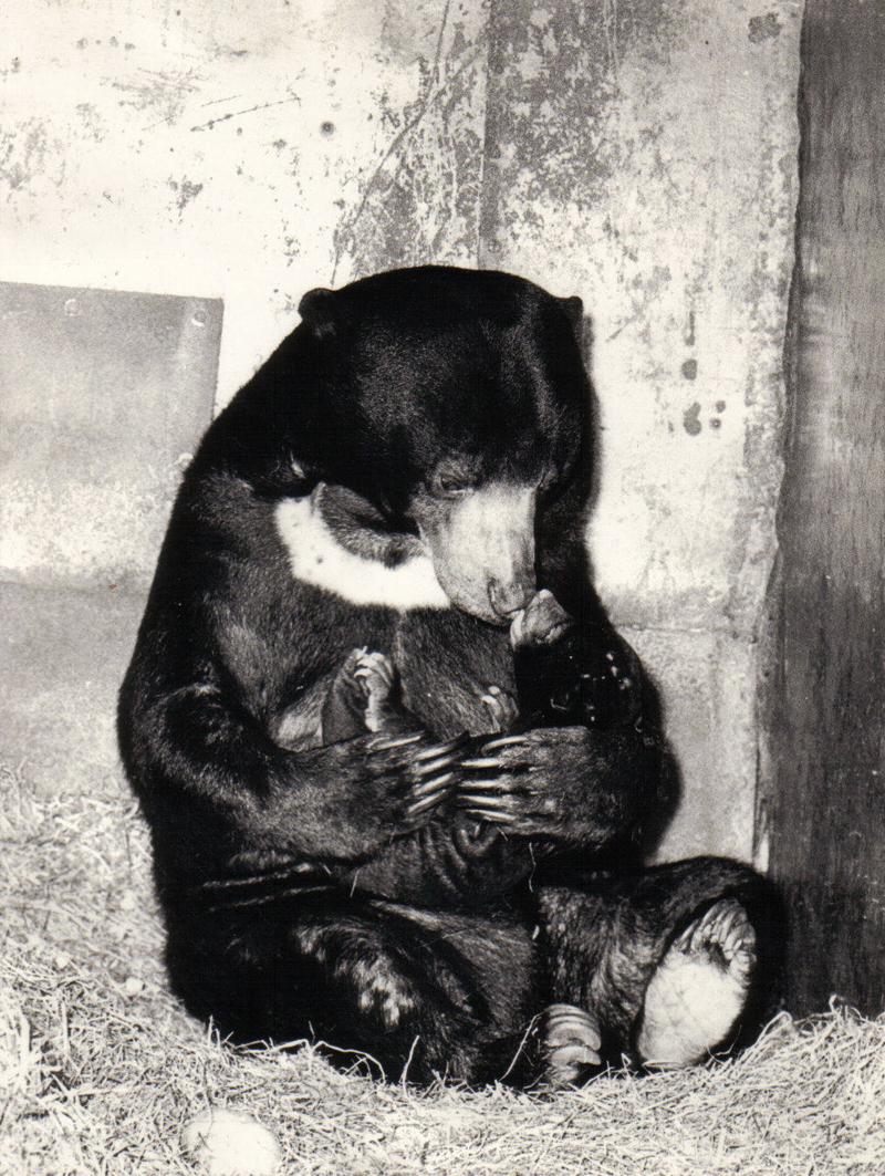 Tschita mit Idi, Tina's Mutter im Jahr 1967